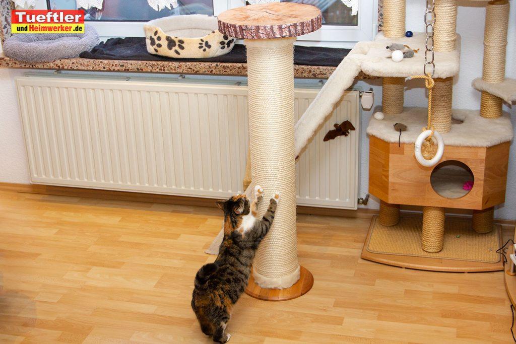 DIY-Katzen-Kratzsaeule-Eigenbau-Fertig