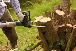 Kettensaege-Baum-faellen