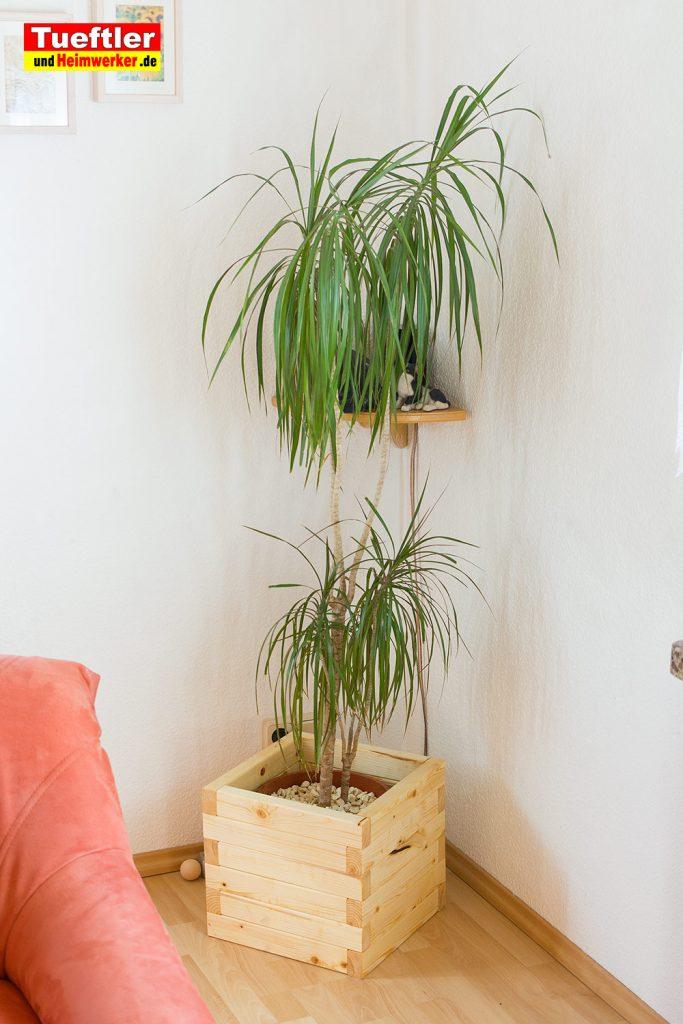blumenkuebel-wohnzimmer2