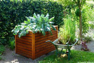 Mit einem Hochbeet besonders effektiv gärtnern