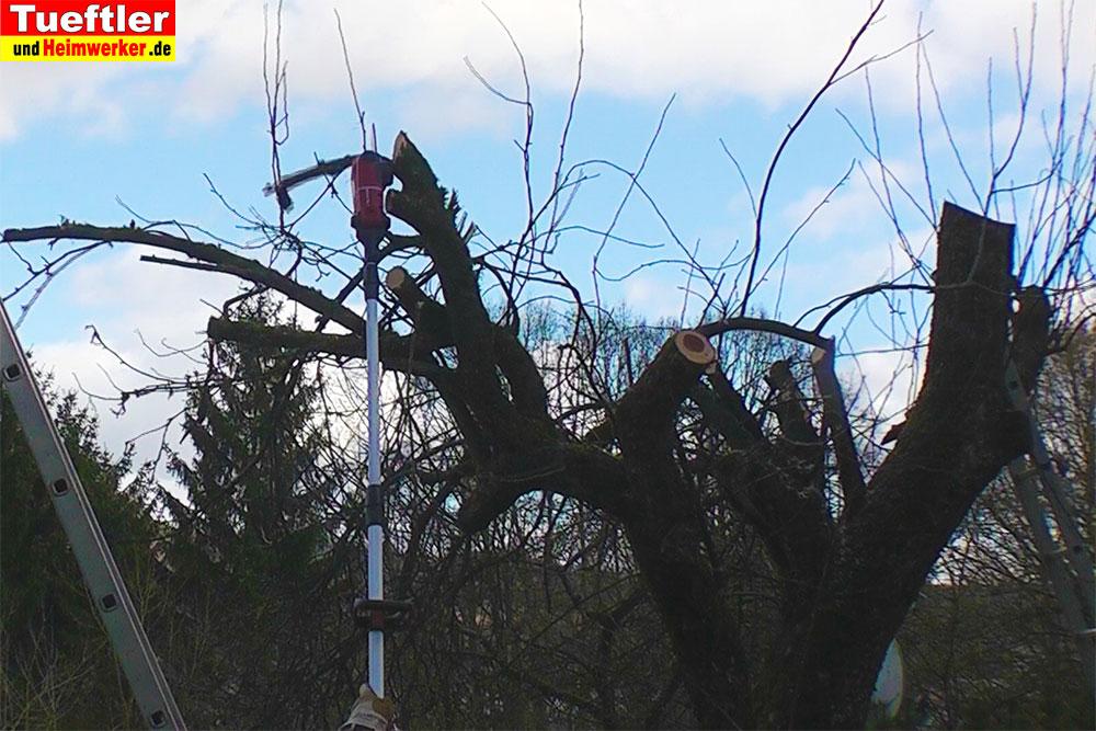Hochentaster-Einhell-GE-LC-18-Li-Test-Baum-saegen
