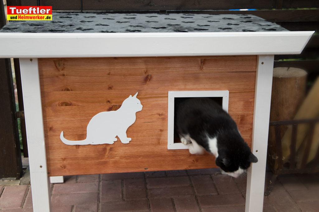 Katzenhaus-DIY-Projekt-Fertig-aufgebaut-Katze-steht-auf