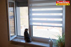 Fenster-trocknen-lueften