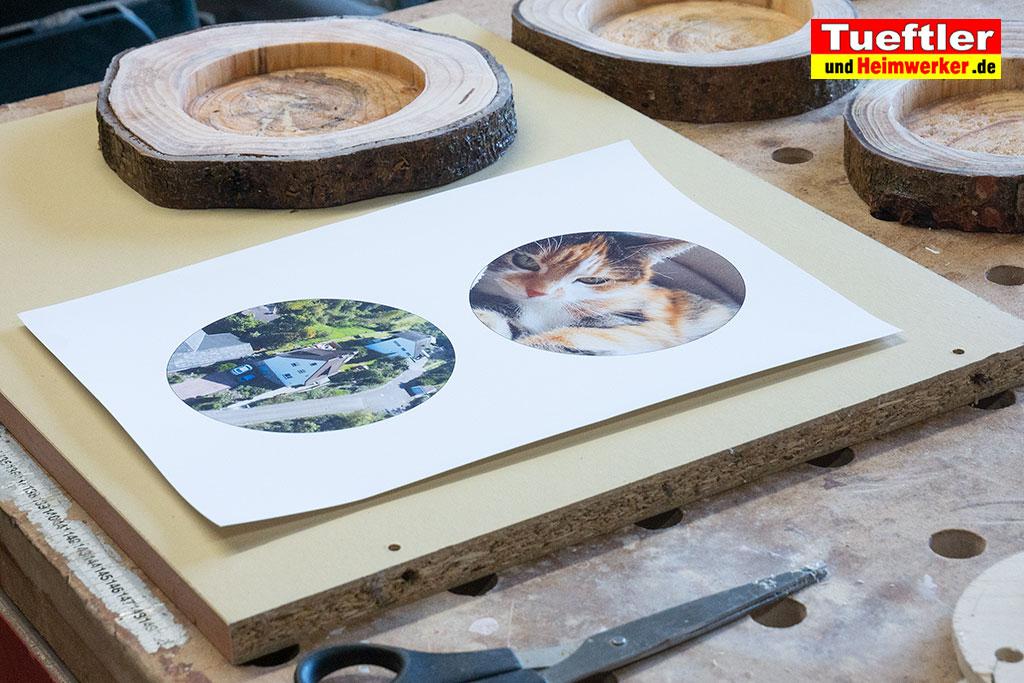 Baumscheiben-Bilder-ausschneiden