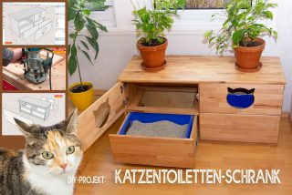 DIY-Katzen-Toiletten-Schrank-bauen-Titel.jpg